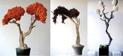 Vasos e Jarras decorativas