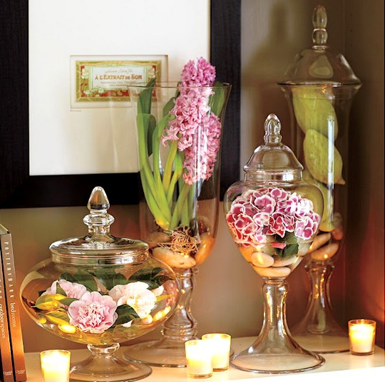 Vasos decorativos para a casa